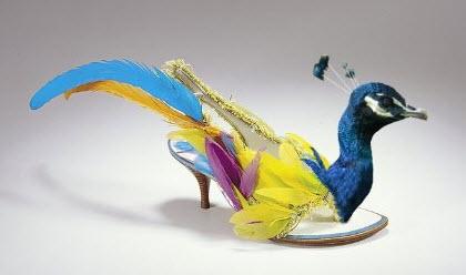 Thanksgiving-turkey-feather-shoes-shoeblog